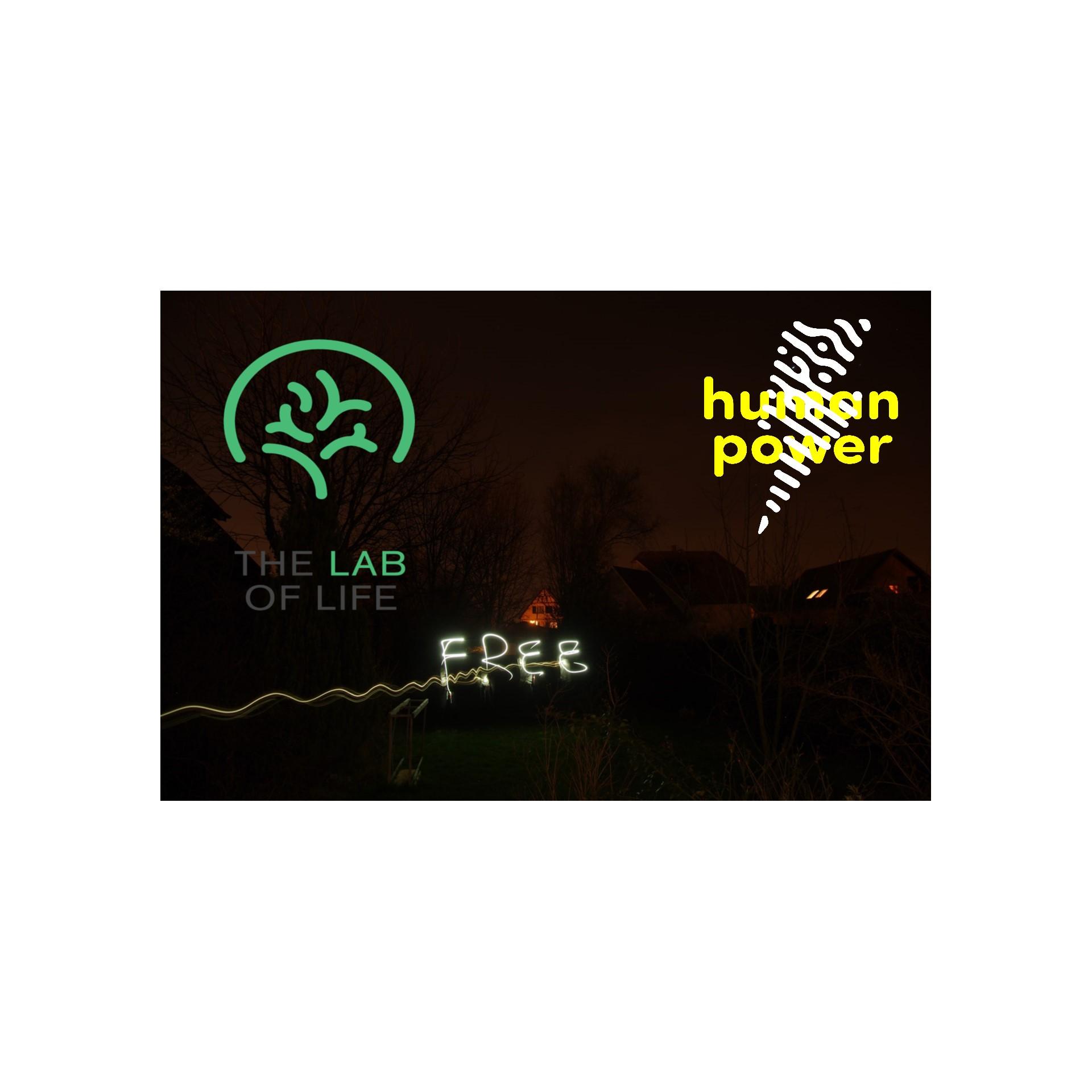 hpn free workshop lol.jpg