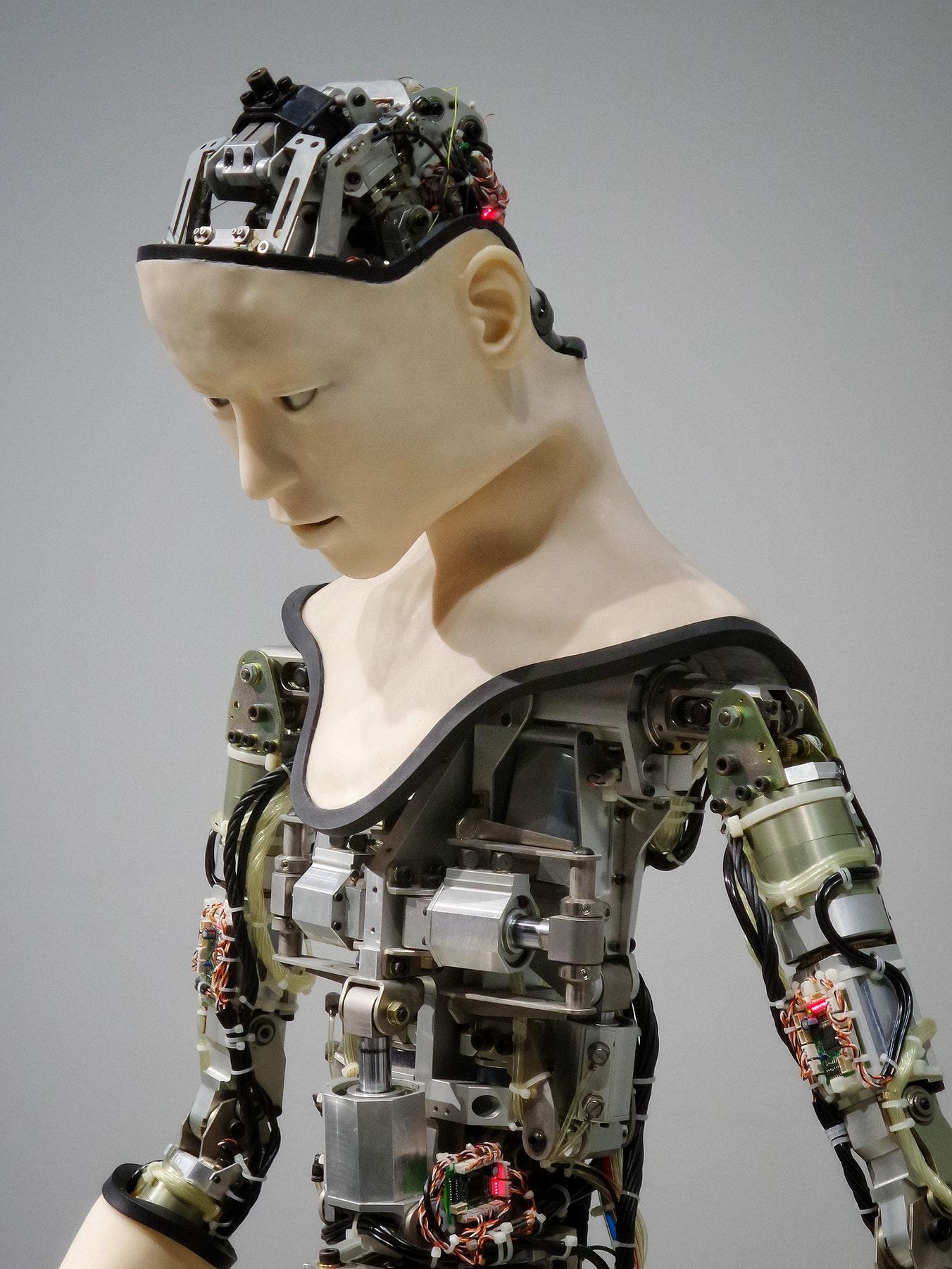 hpn robot.jpg