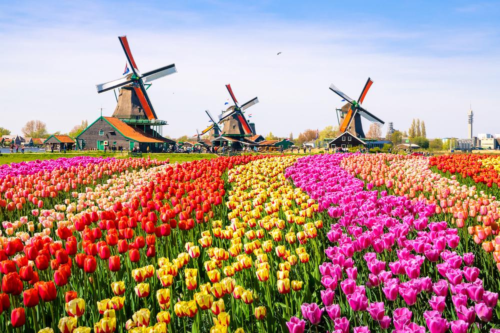 Nederlandske ikoner