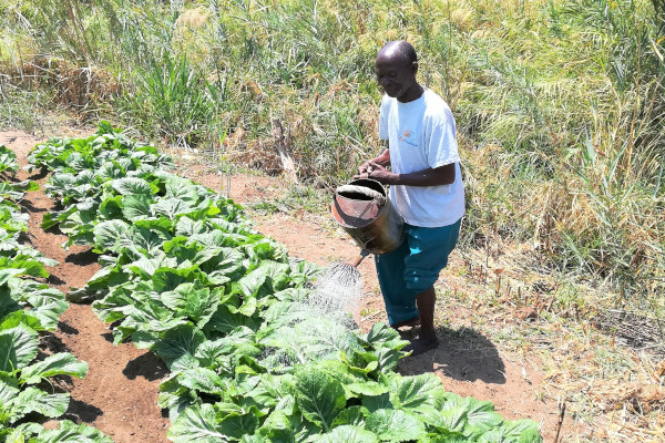 A husband waters the crops in the women's health group's garden.