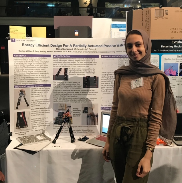Rana Mohamed '19 hopes to project her findings onto an actual exoskelton.