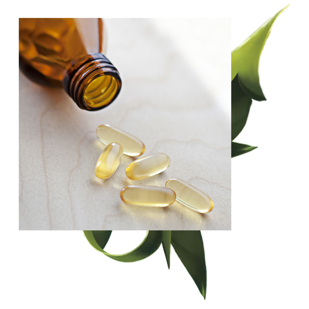 CoQ10 - CoQ10 is a fat-soluble nutrient that is small enough to penetrate the skin's barrier to provide antioxidant effects. CoQ10 can increase absorption of other essential nutrients and has been shown to help recycle nutrients, further maximizing skin benefits.