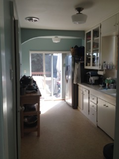 OrganizedOasis_before_kitchen.jpeg