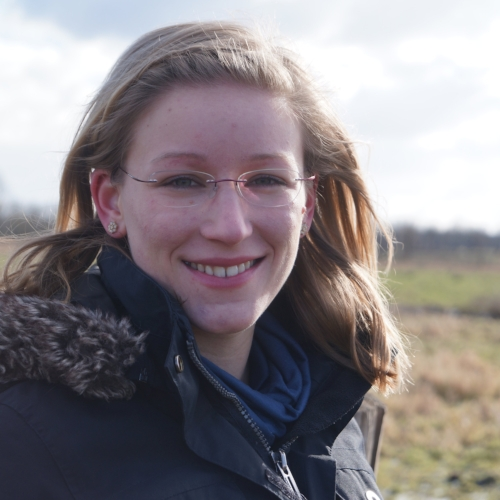 RONJA GEBEL - MSc in Geoecology (2016, University of Potsdam)Topic: Grounding line response to changes in surface mass balance