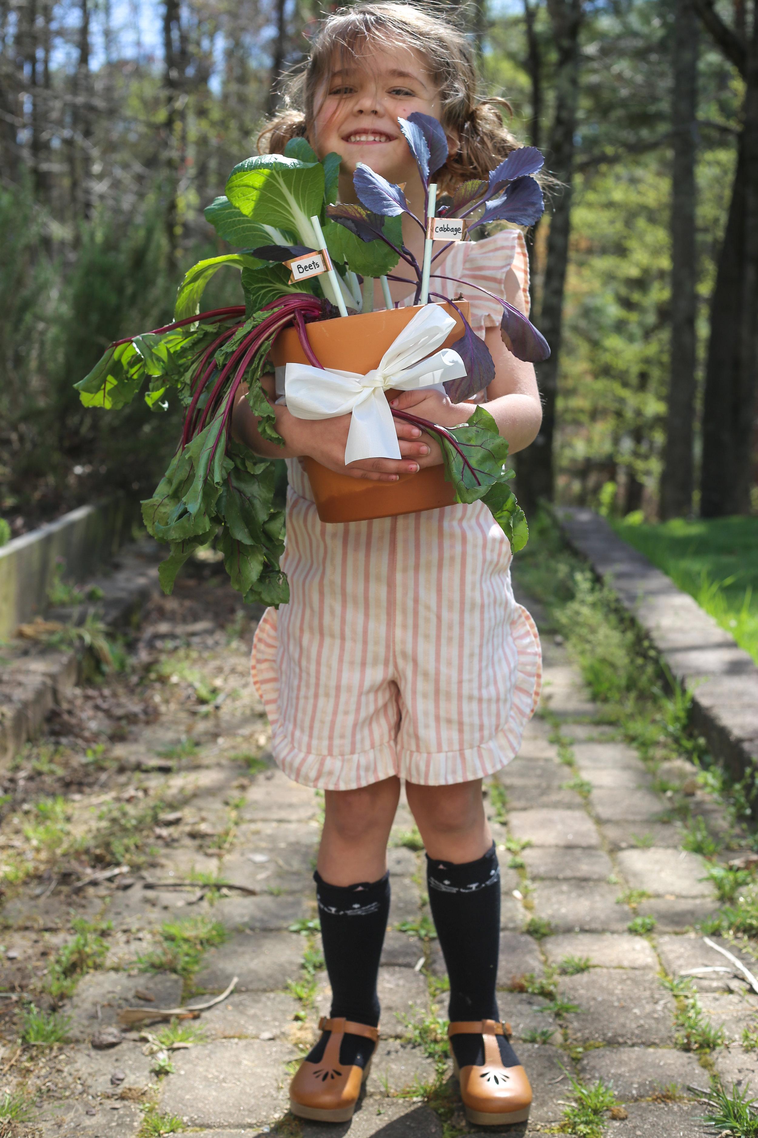 vegetablegardengiftbaskets.jpg