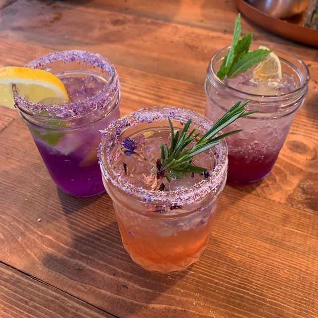"""""""Such a good mix of hands-on fun and ideas for later!"""" - a student from our Cocktail Garden class.  Fun for now AND for later ☺️  #seattle #seattlewa #theworksseattle #seattlelocal #bestofseattle #learnsomethingnew #habitandhome #classes #seattleclasses #seattlecommunity #visitseattle #shoplocal #pnw #seattlestyle #plants #seattlemade #seattlemakers #seattlemaker """