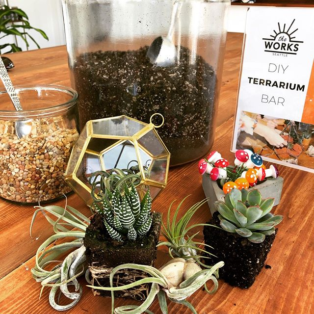 Looking to add more plant babies to your life? We have an Airplant Terrarium Drop-in event happening this Saturday! Stop by anytime between 1pm and 4pm to create your own terrarium to take home. PLUS - we're having a semi-annual badass garage sale which means crazy markdowns on some of our retail items!! Just $20 to come in to make a terrarium, or free if you're just stopping by for the sales. We hope to see you there 🌱😊  #seattle #seattlewa #theworksseattle #seattlelocal #bestofseattle #learnsomethingnew #habitandhome #classes #seattleclasses #seattlecommunity #visitseattle #shoplocal #pnw #seattlestyle #falldecor #terrarium #terrariumworkshop #diy #plants #seattlepopup