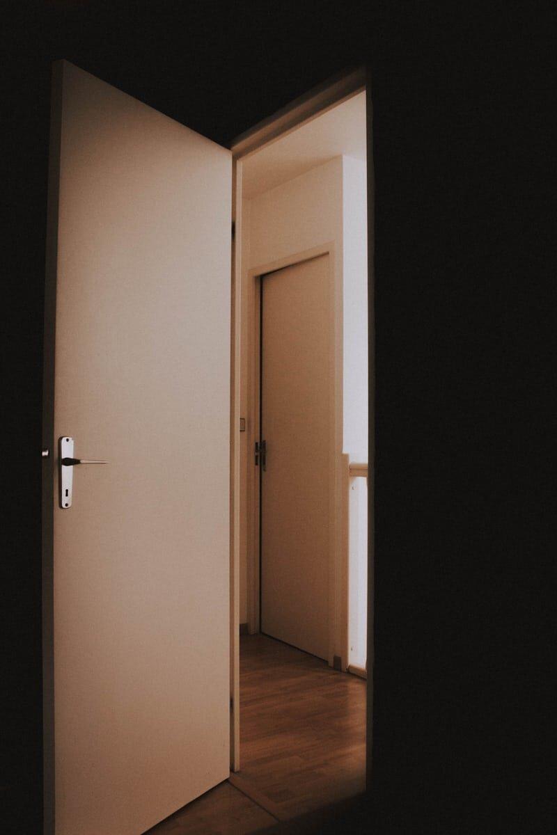 The Door | My Ancestors Cries