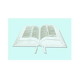 Bible (edit1).png