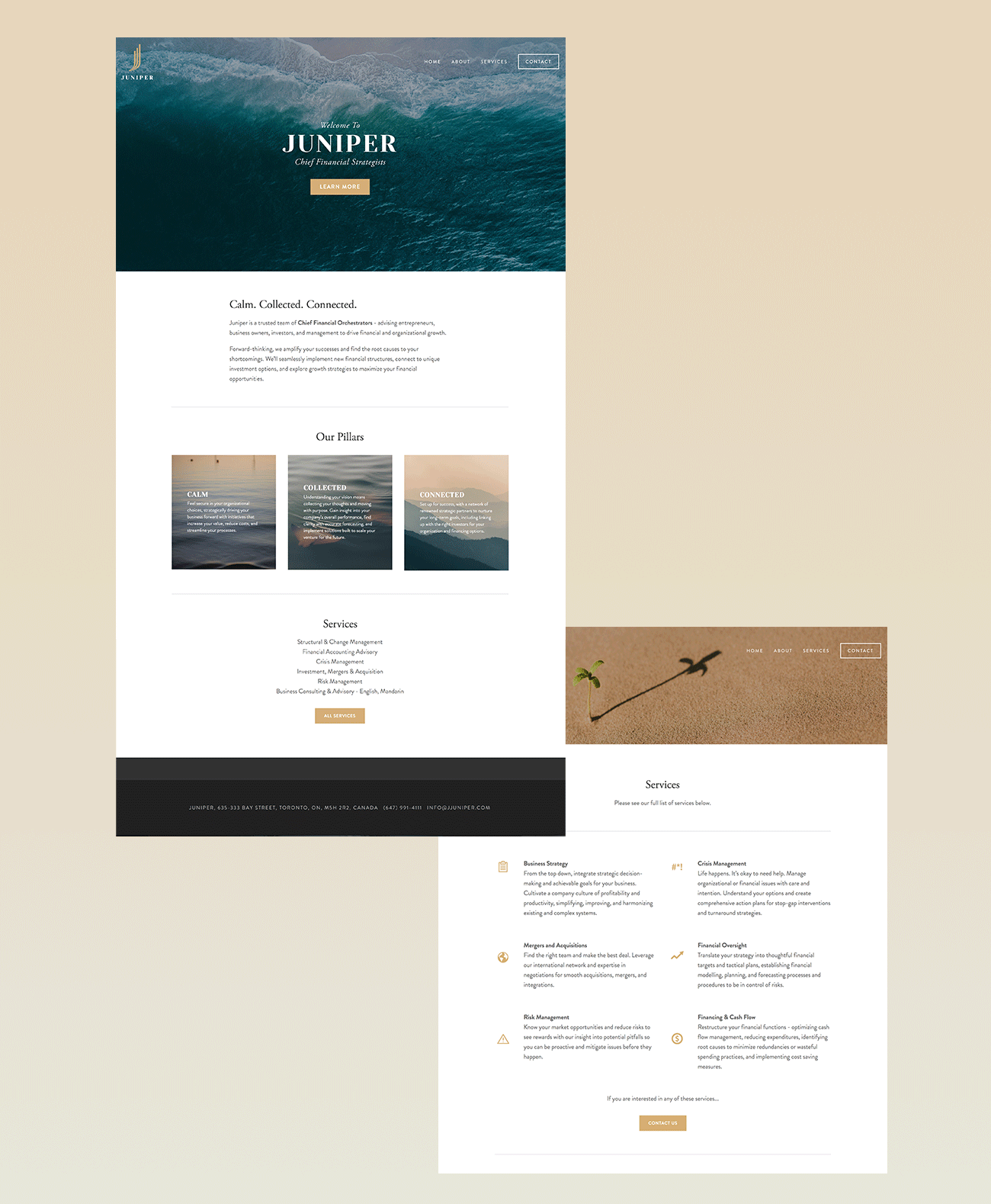 juniper-website-mockup-2.png