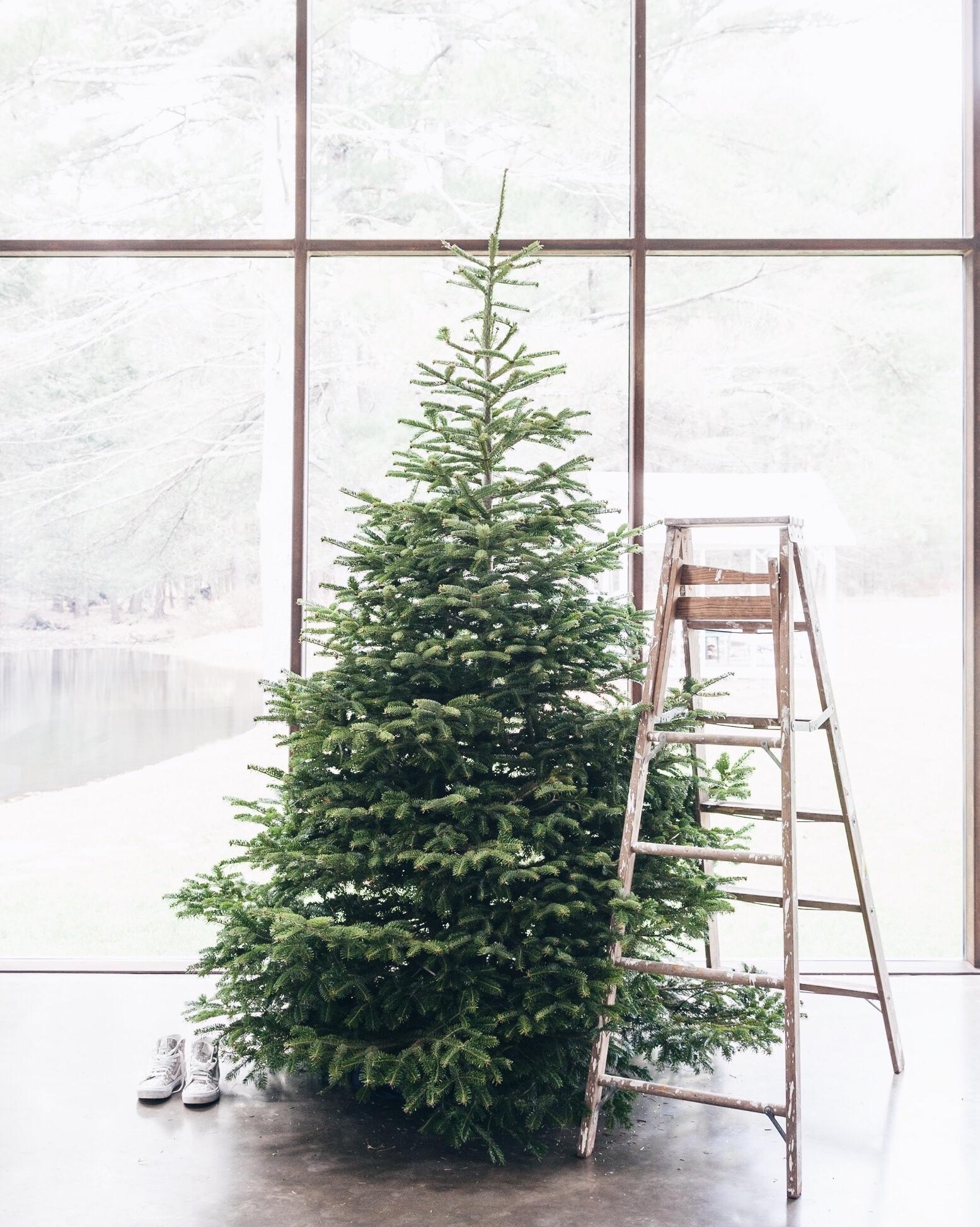 HolidayWorkroom_3.jpg