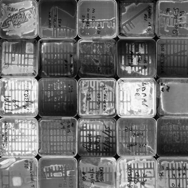 ONE-Lab_09_pix.jpg