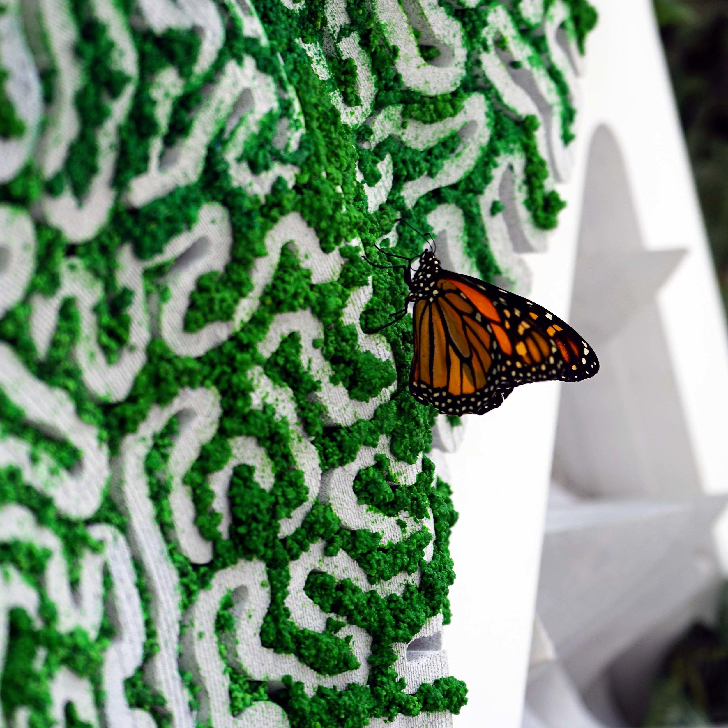 TerreformONE_MonarchSanctuary_ButterflyonMossPanel2.jpg