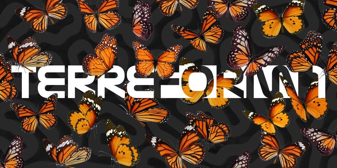 Terreform-Monarch-butterfly-sanctuary.jpg