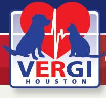 new-vergi-houston-logo.jpg
