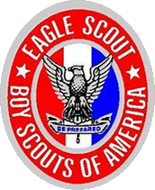 eagle scout no background.png