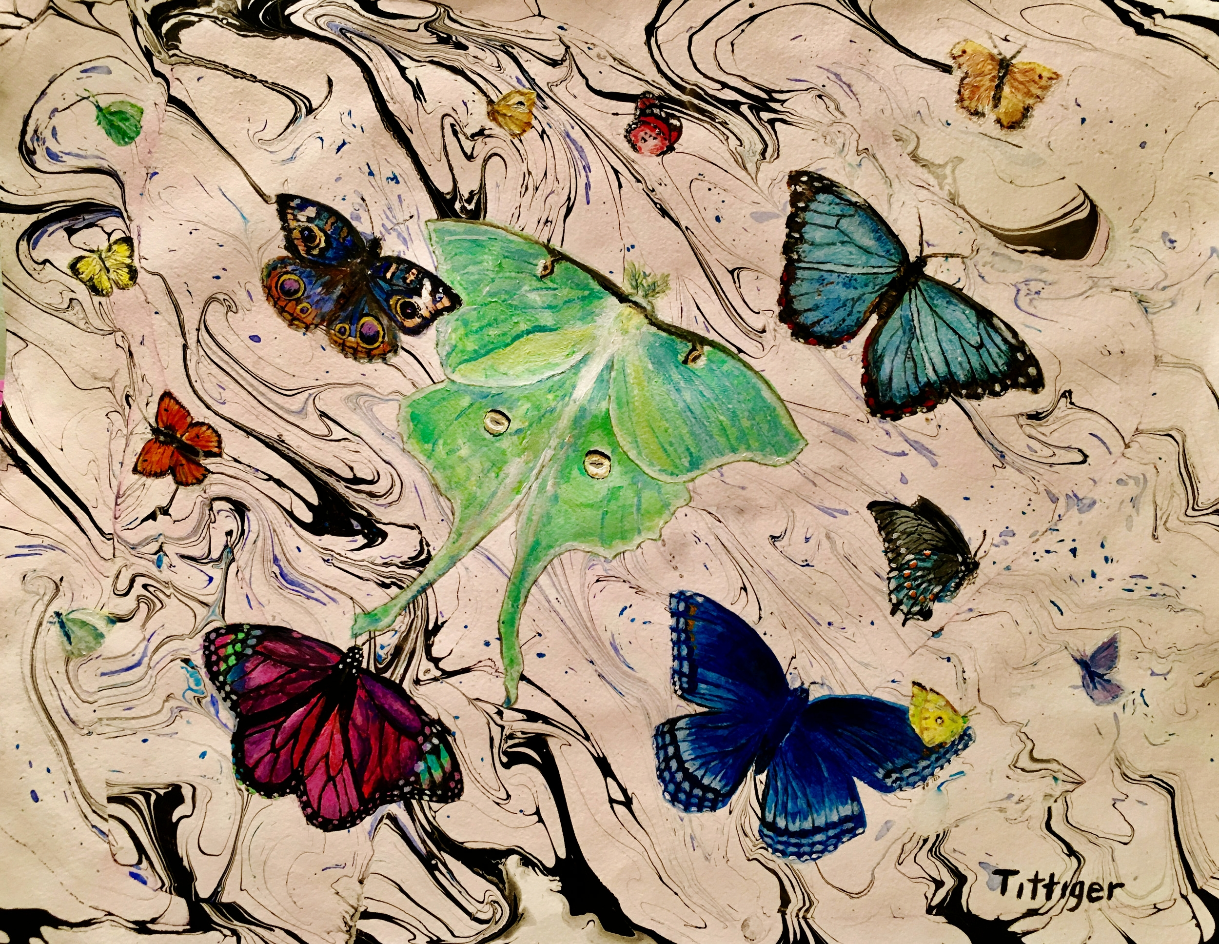 BUTTERFLY COLLECTION    This is a 16 x 20 acrylic marbling with an acrylic painting over top of the marbling.