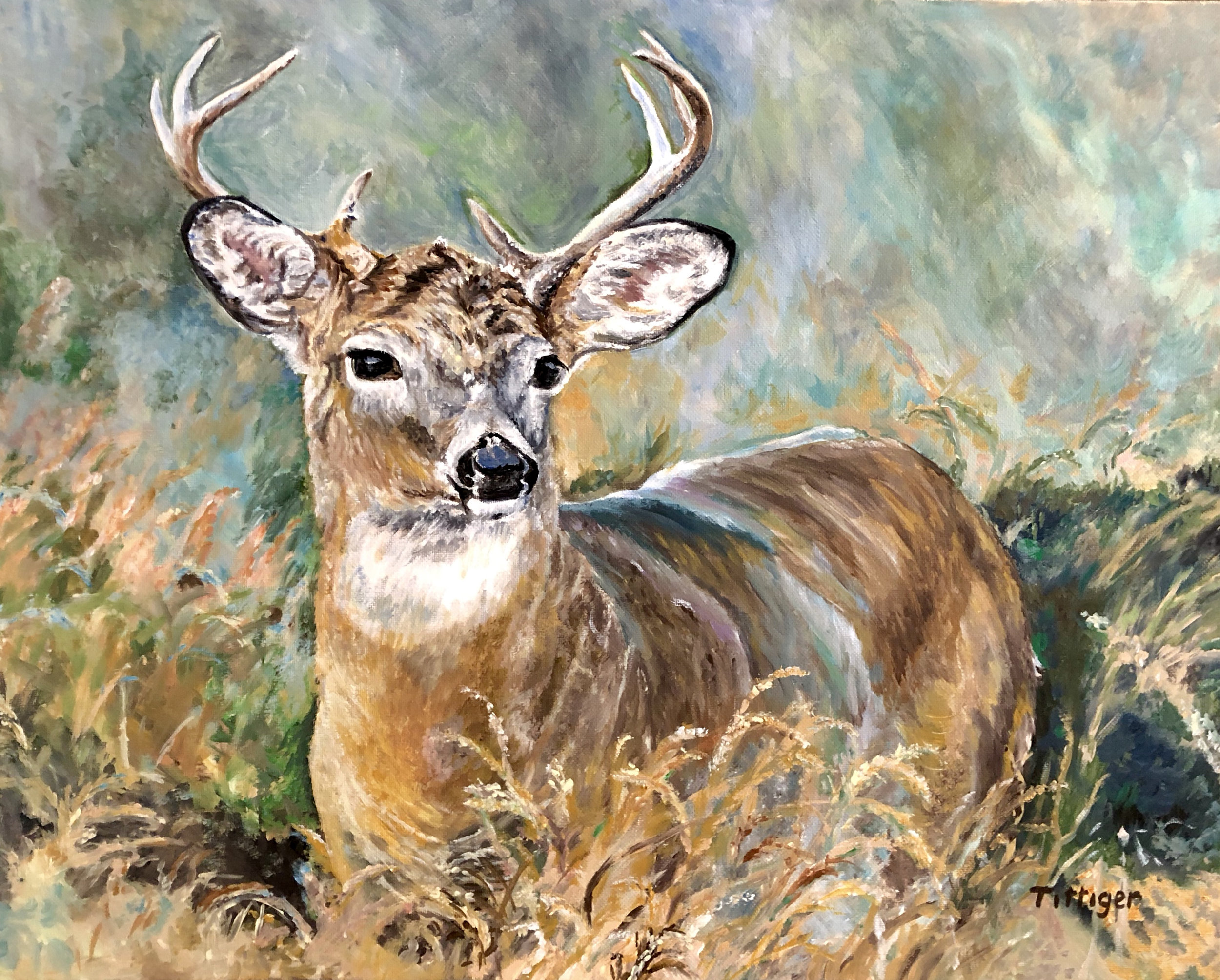 STILLNESS    This is a 16 x 20 beautiful acrylic painting of a buck. He just standing so still among the fall grass. I love all the colors. I grew up in the country so this painting brings back many memories of all the wildlife in the area.