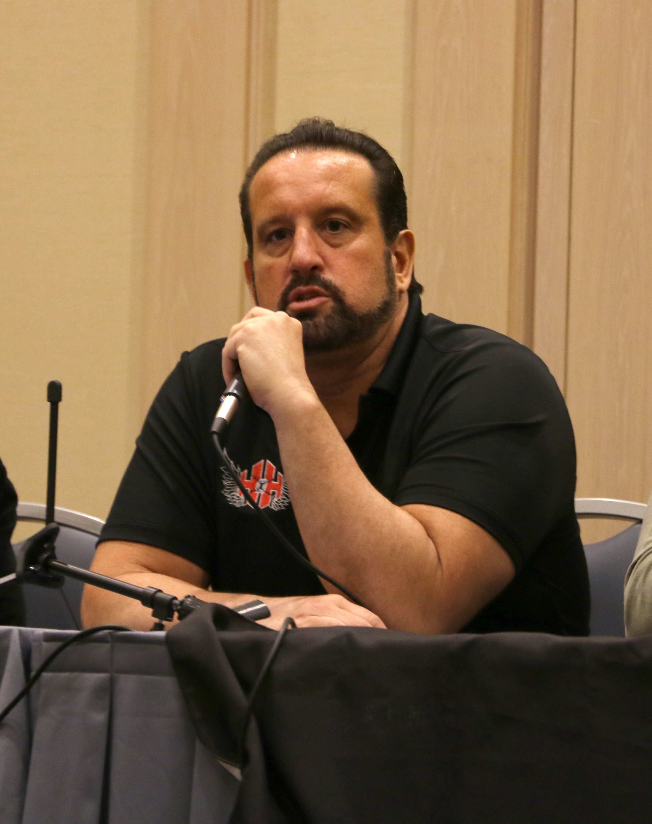 Tommy Dreamer speaks during a wrestlers' panel at Wizard World Chicago on Saturday, Aug. 25, 2018.  (Photo by Mike Pankow)