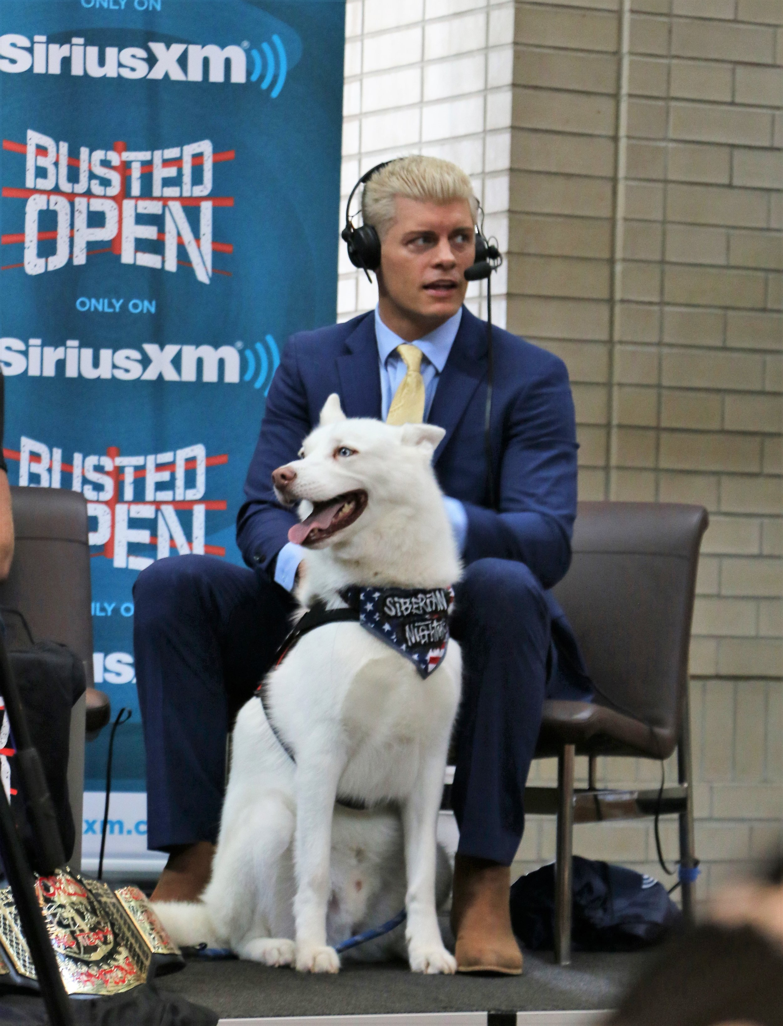 Fresh off the success of ALL IN last summer, Cody Rhodes (pictured with his dog, Pharaoh, at STARRCAST on Aug. 31, 2018) will be among the management team for All Elite Wrestling.  (Photo by Mike Pankow)