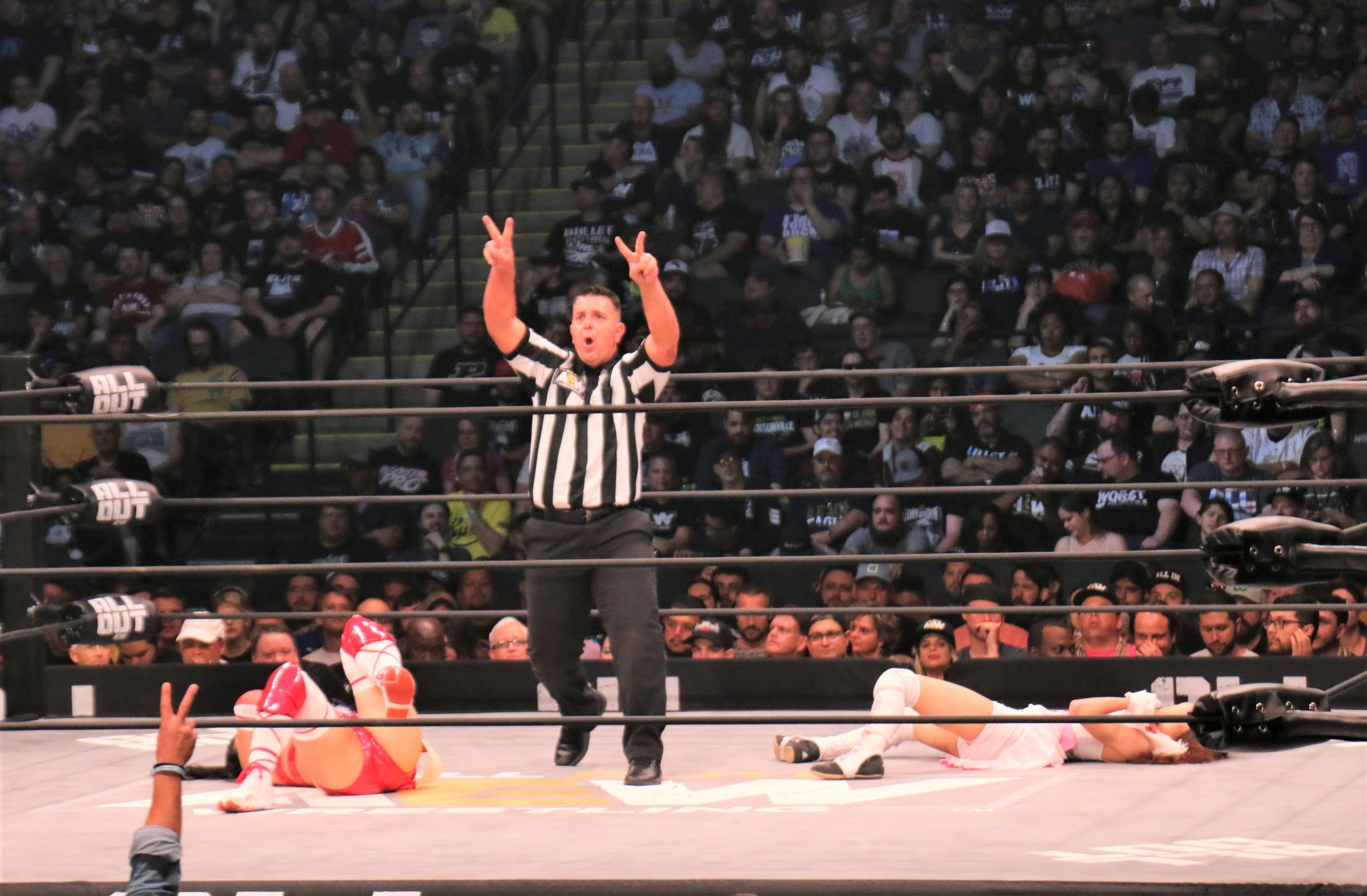 Referee Paul Turner puts the double count on Hikaru Shida and Riho.
