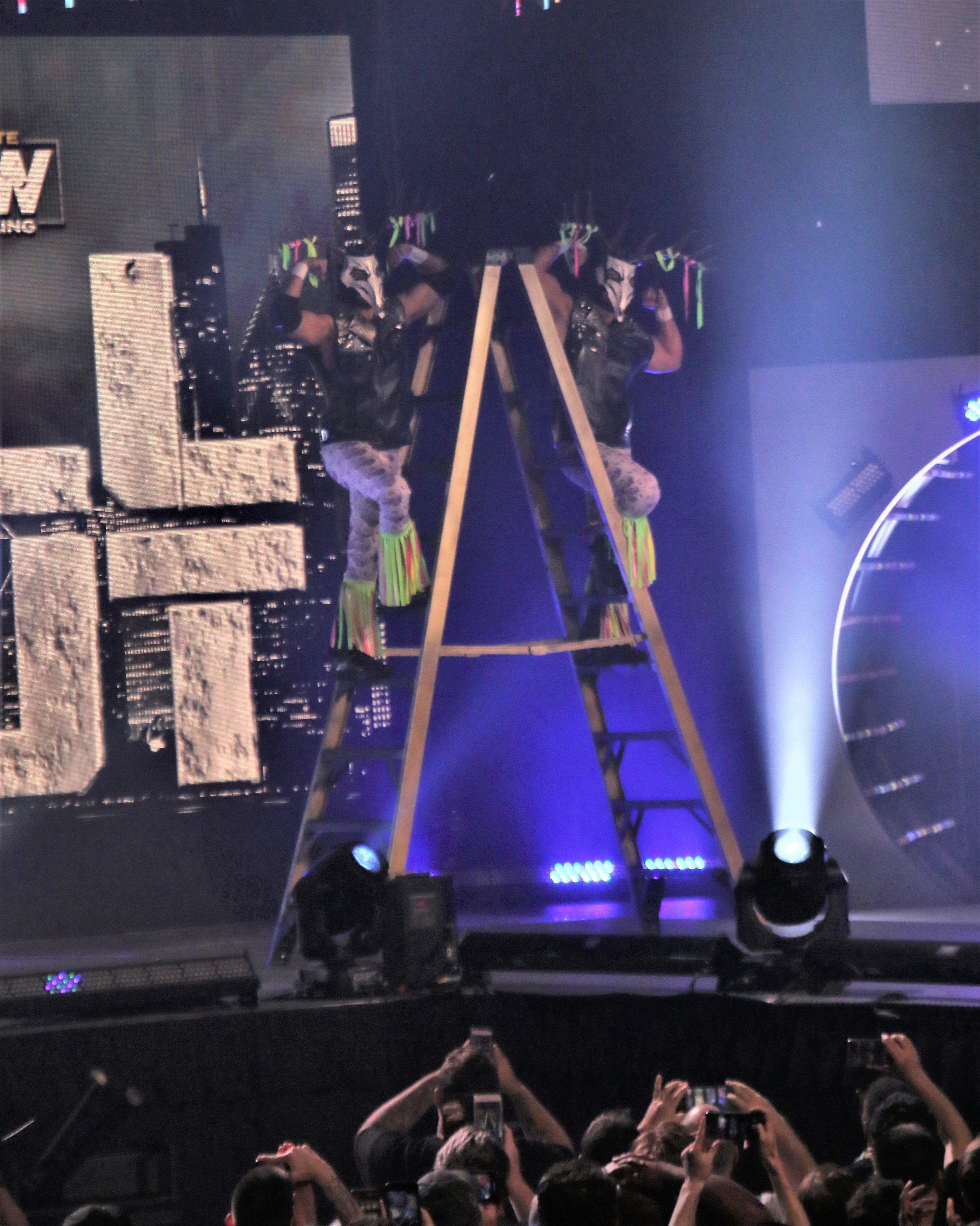 The Young Bucks pose on a ladder before their entrance.
