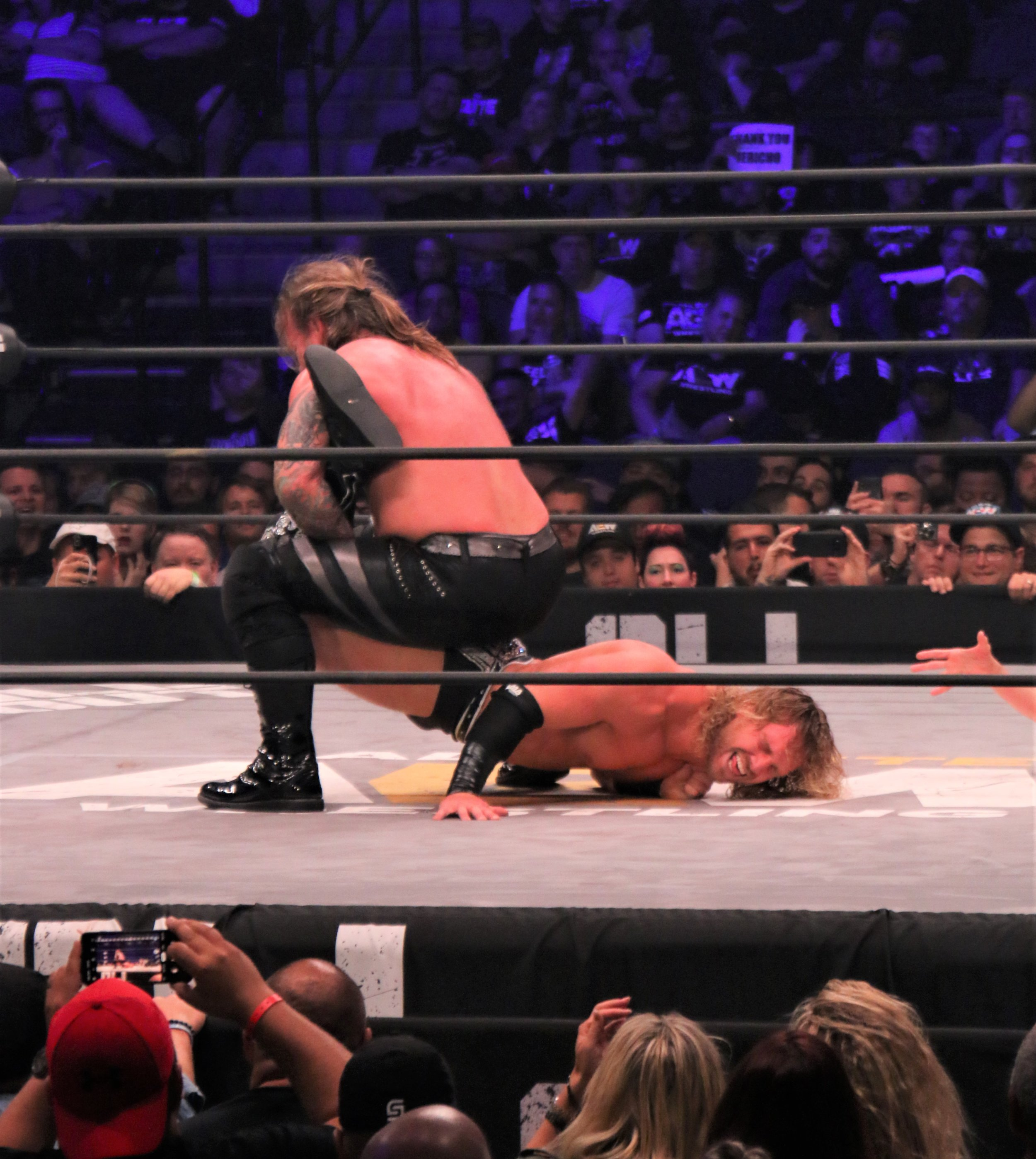 Chris Jericho puts Hangman Page in the Walls of Jericho.