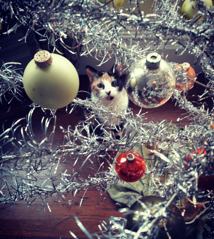 ChristmastreeLena.jpg
