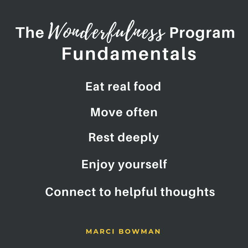 The-Wonderfulness-Program-Fundamentals.png