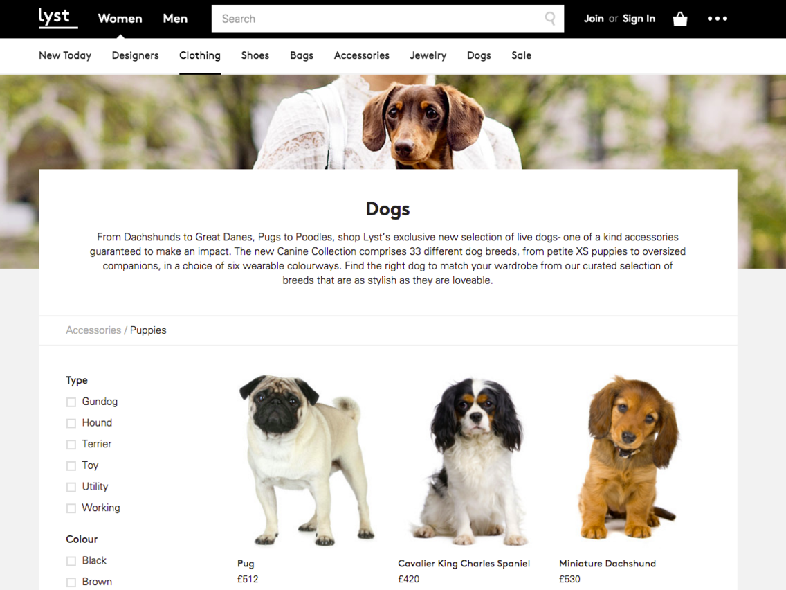 The Canine Collection - Lyst.com