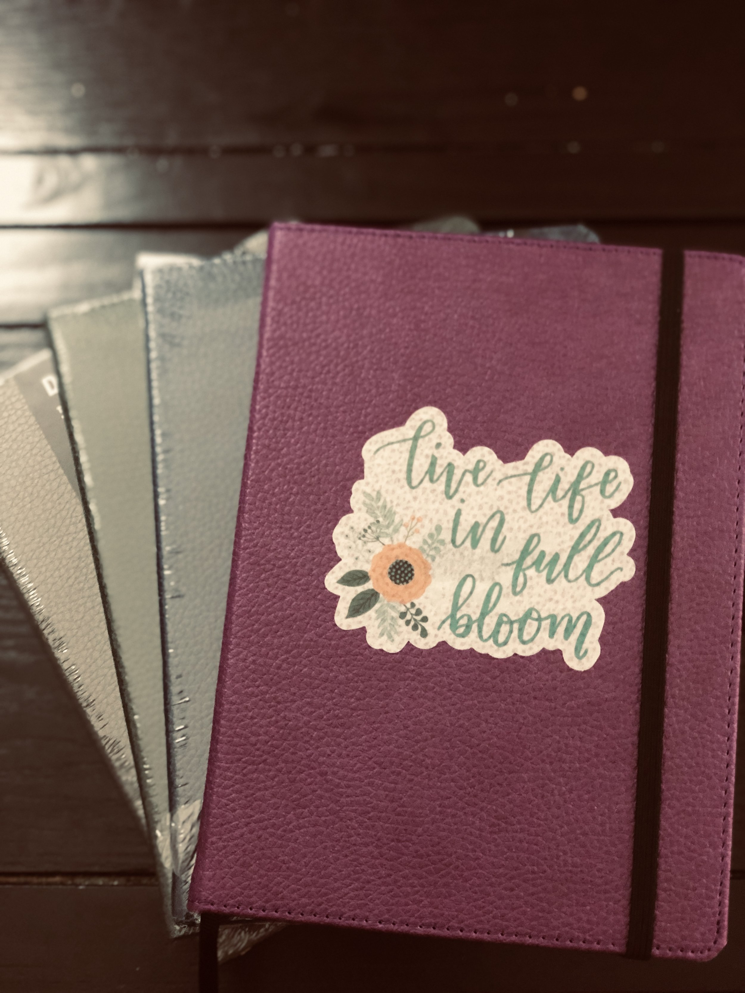 Dingbats Notebooks
