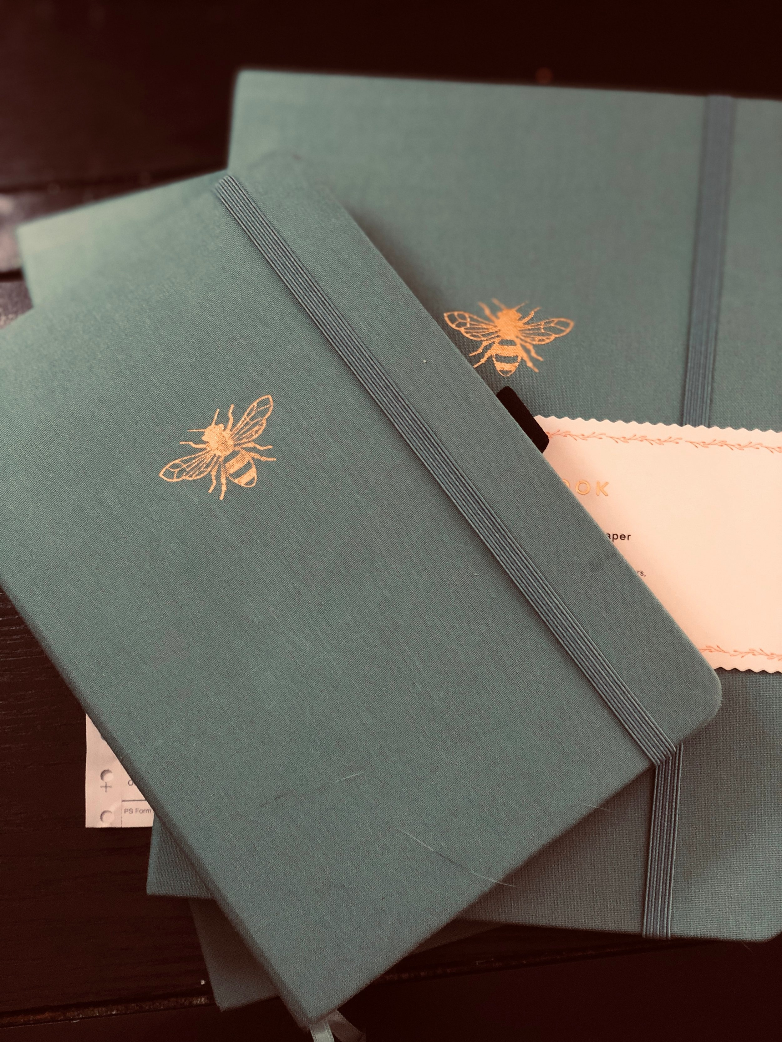 Archer and Olive Notebooks