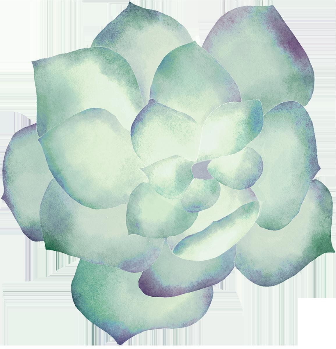 Watercolor_succulent_clip_art10.png