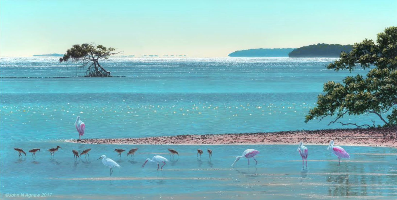 JOHN H. AGNEW,HIGH NOON ON FLORIDA BAY  ACRYLIC ON PANEL, 12 IN. X 24 IN.