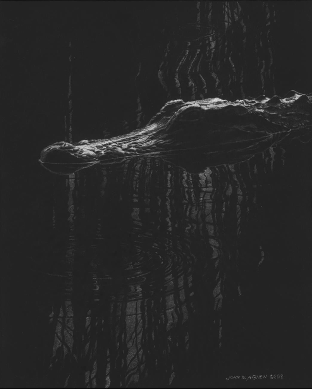 JOHN H. AGNEW, GATOR REFLECTIONS  SCRATCHBOARD, 12 IN. X 9IN.