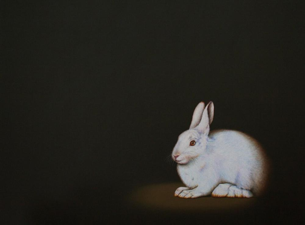 ISABELLE DU TOIT, Snowshoe Hare  Oil on Canvas, 30 in. x 40 in.
