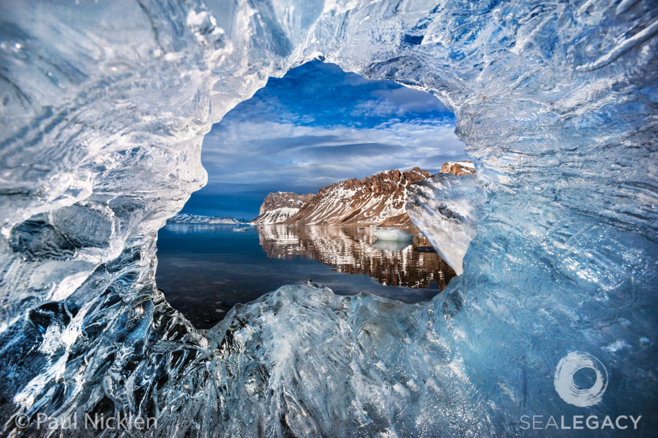 Paul Nicklen, Through the Hole  Archival Pigment Print, 20x30 in.