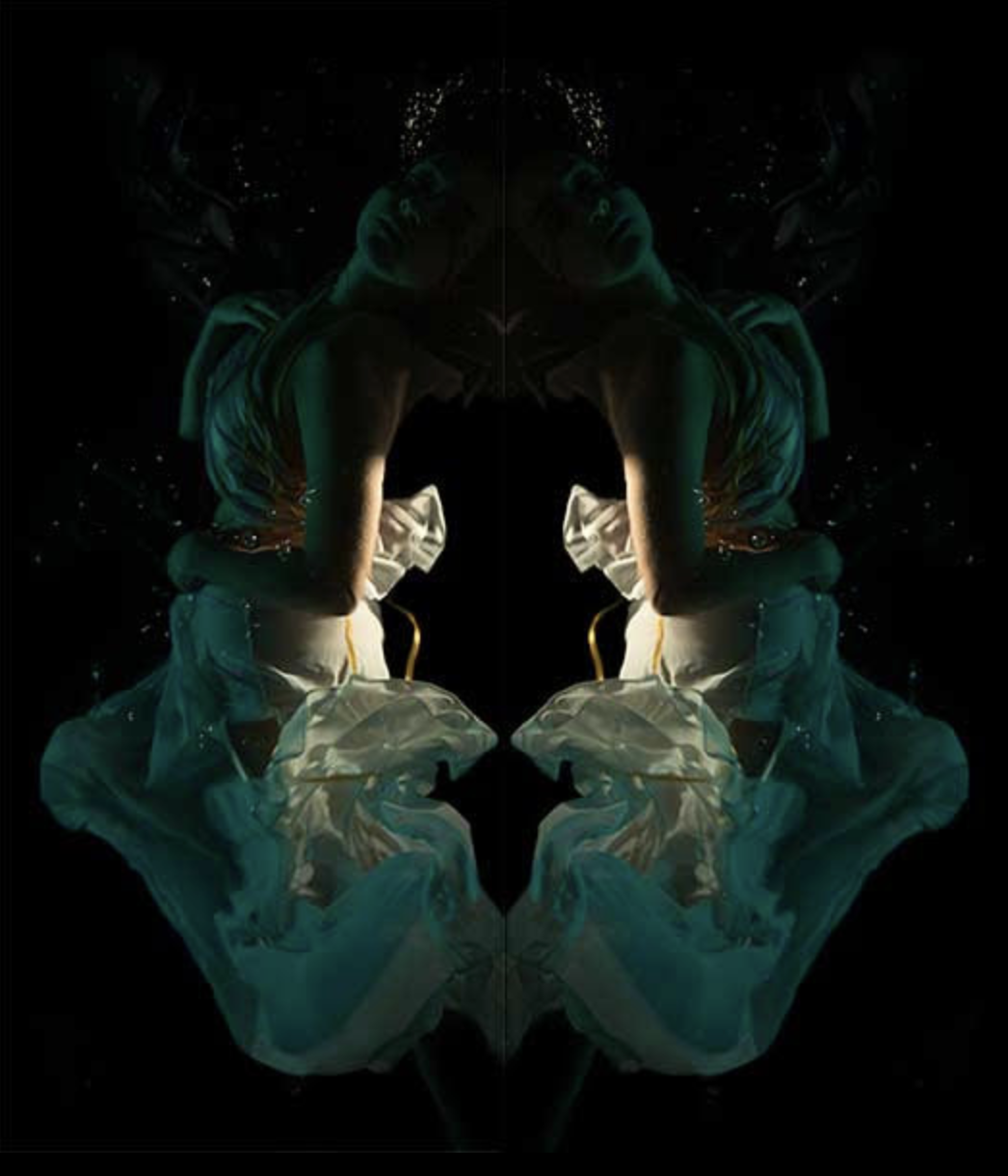 Christy Lee Rogers, Reflected in the Stars  Archival Pigment Print