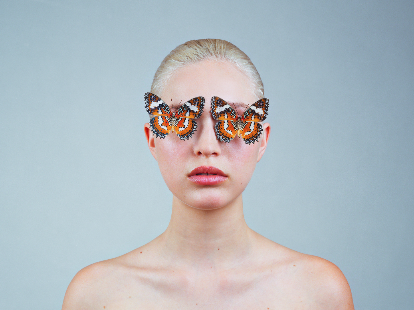 TYLER SHIELDS, Butterflies  Digital Chromogenic Print, 40 in. x 32 in.