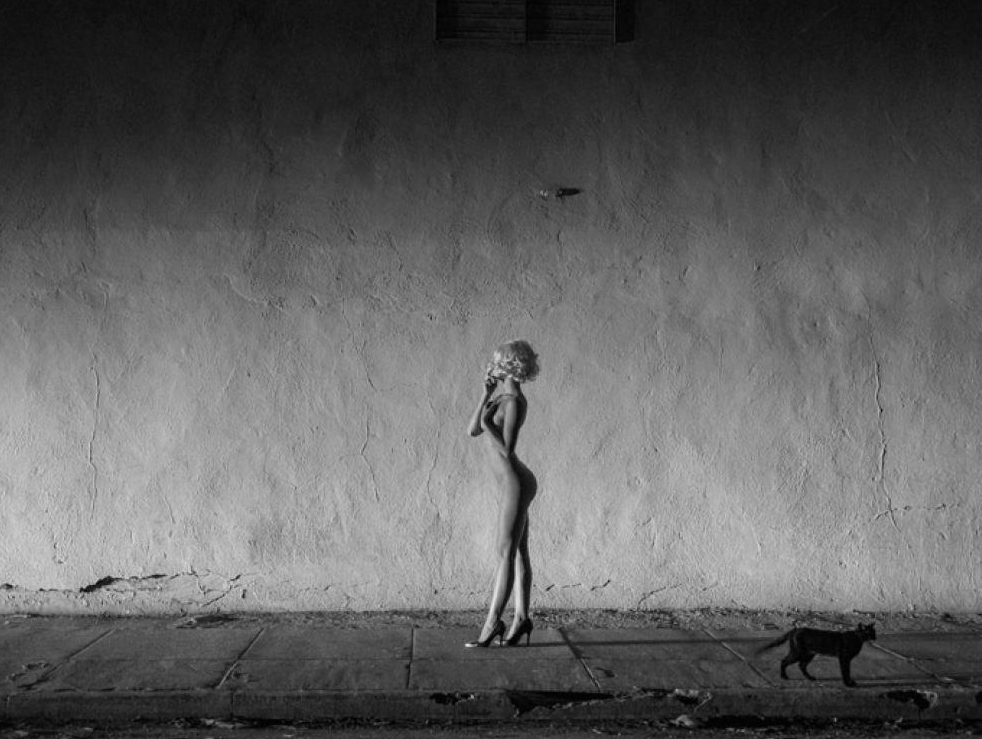 Tyler Shields, Black Cat  Digital Chromogenic Print, 45x60 in.