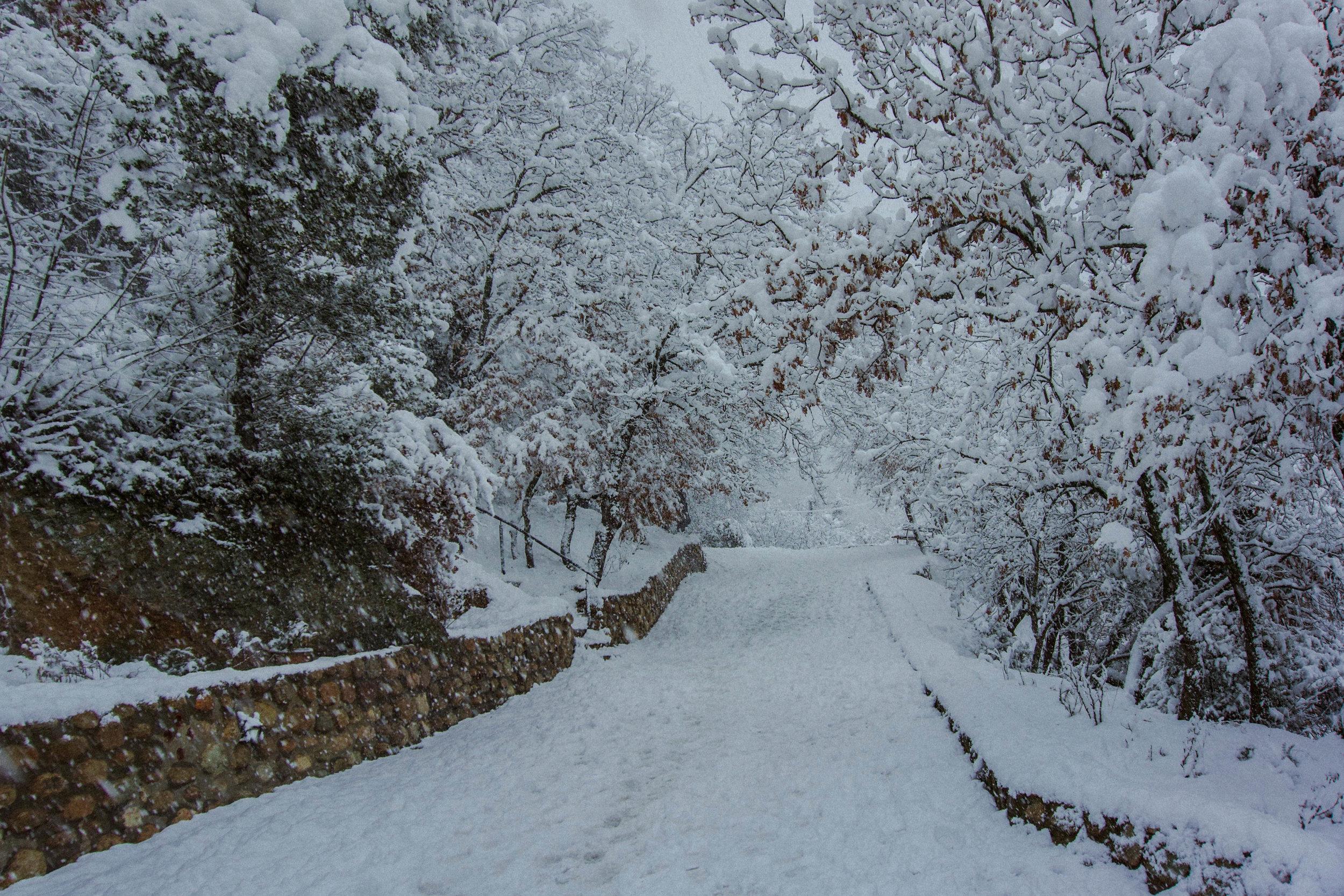 Meteora_01_Winterwind.JPG