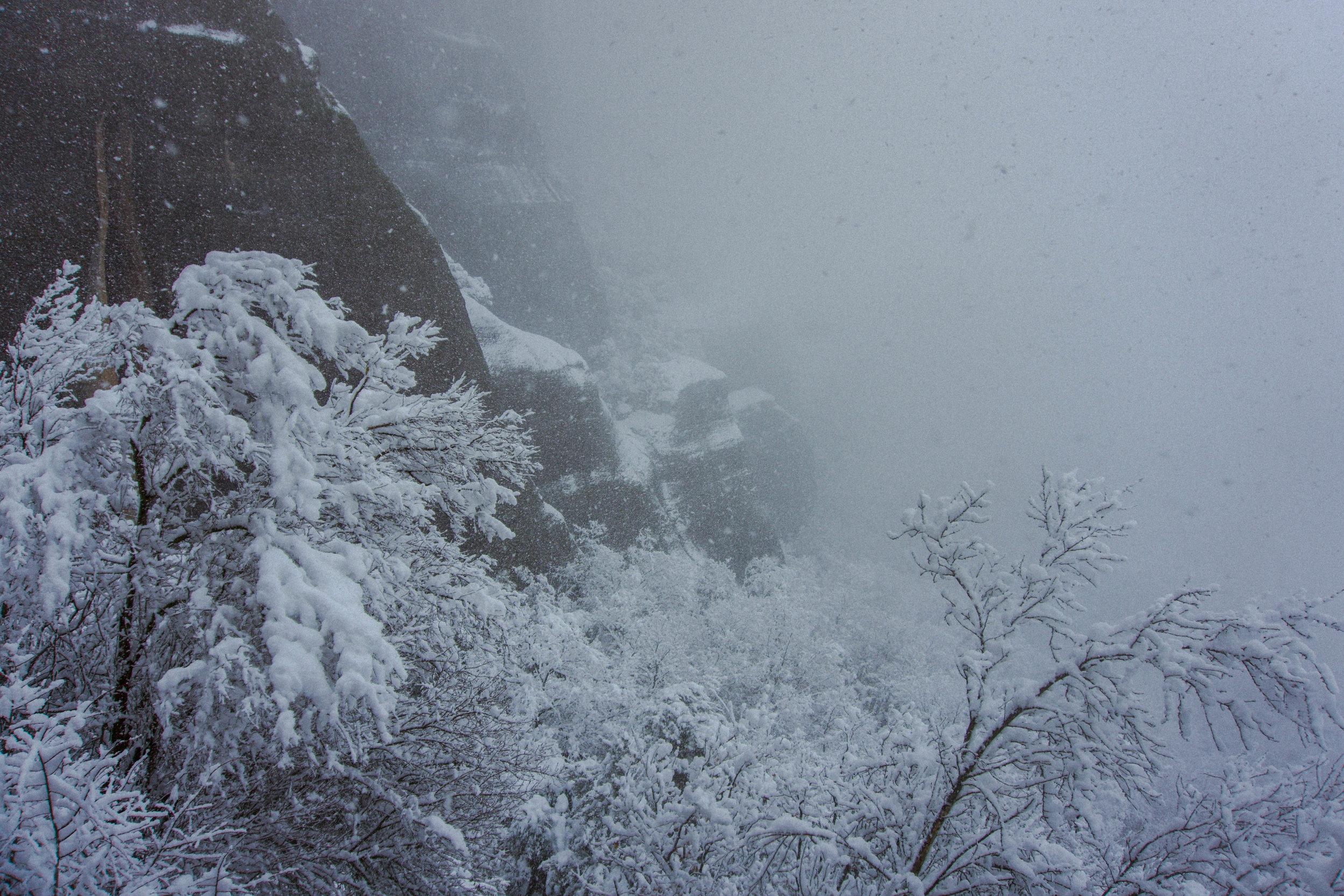 Meteora_09_Winterwind.JPG