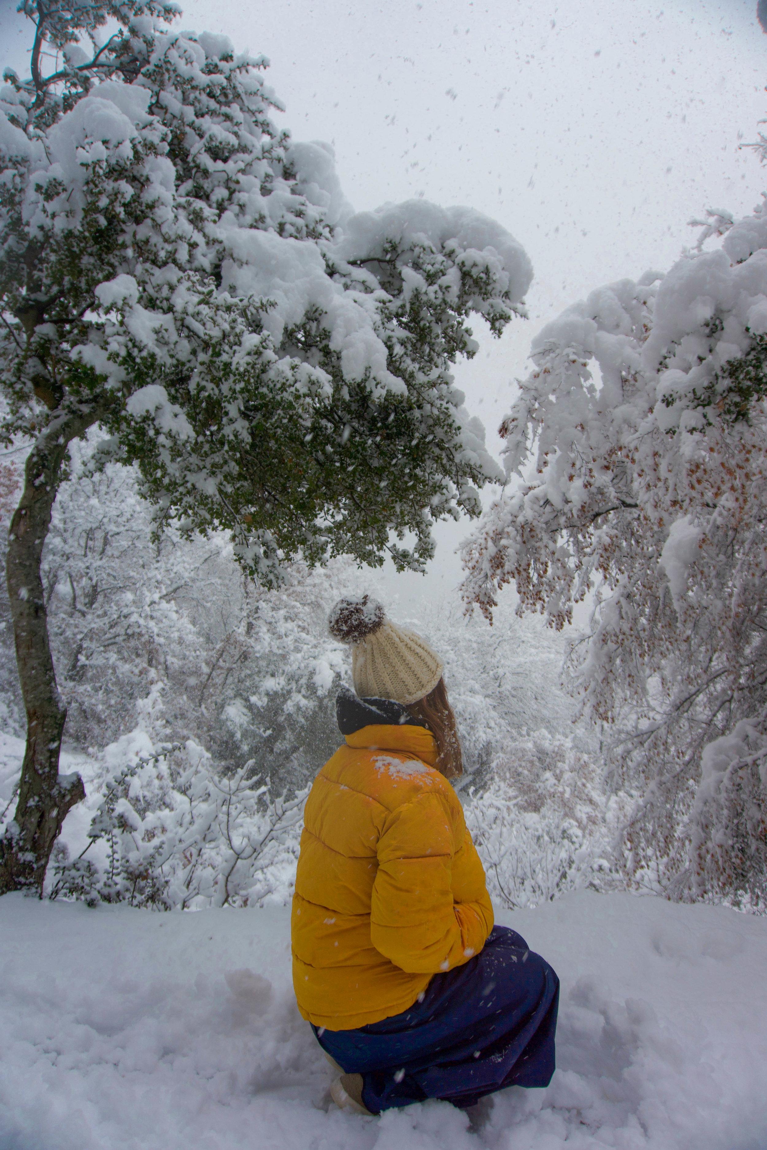 Meteora_06_Snowbunny.JPG