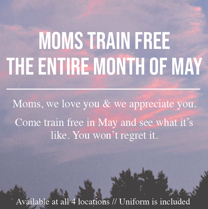 Moms Train Free Online5.png