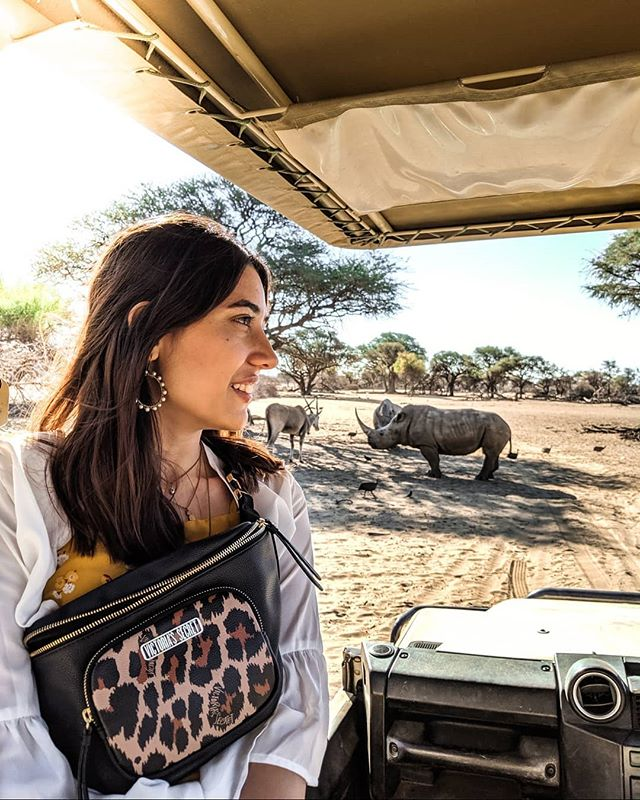 I know it's too late for posting this in India, most of you would be falling asleep, but couldn't help but share about my first day in the capital city of #Namibia ! Saw some protected Rhinos up close and personal and also fed some cheetahs! 😍  Seeing wildlife up close and personal is such a surreal experience! . . . P.S. swipe to see how I almost got attacked by a Rhino. 🤣 (Not really) . . . @explore_wild_planets #teampixel #TanyaInNamibia