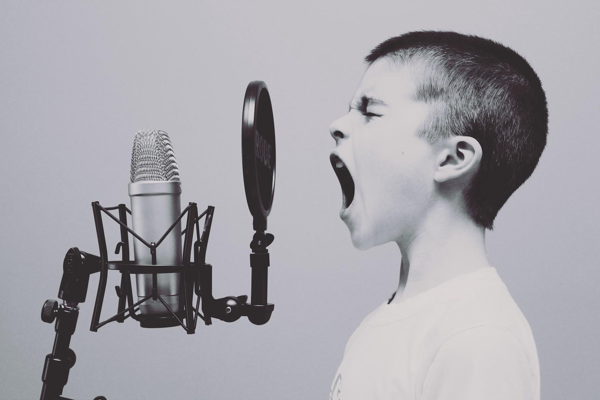 Voice humanizes brands.