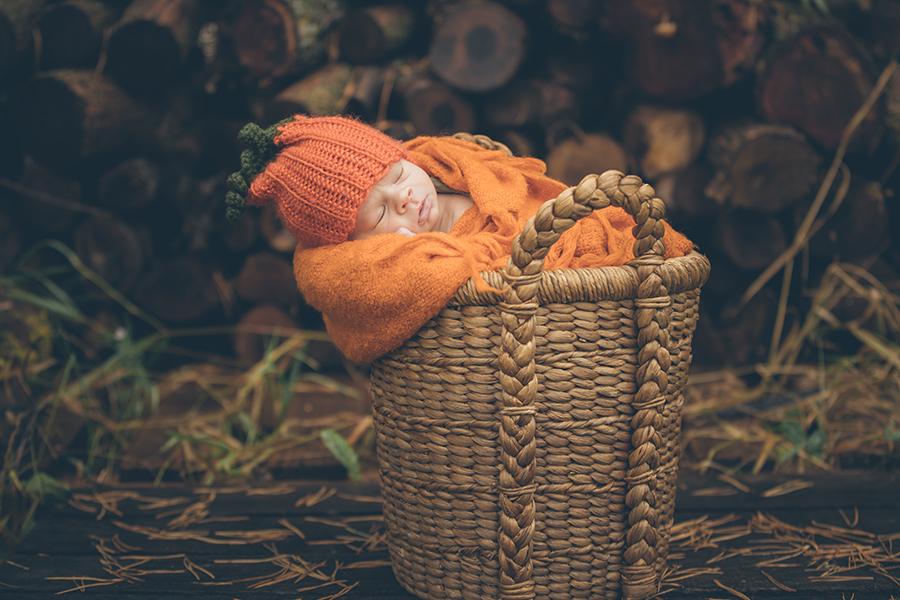 northfield-newborn-photographer