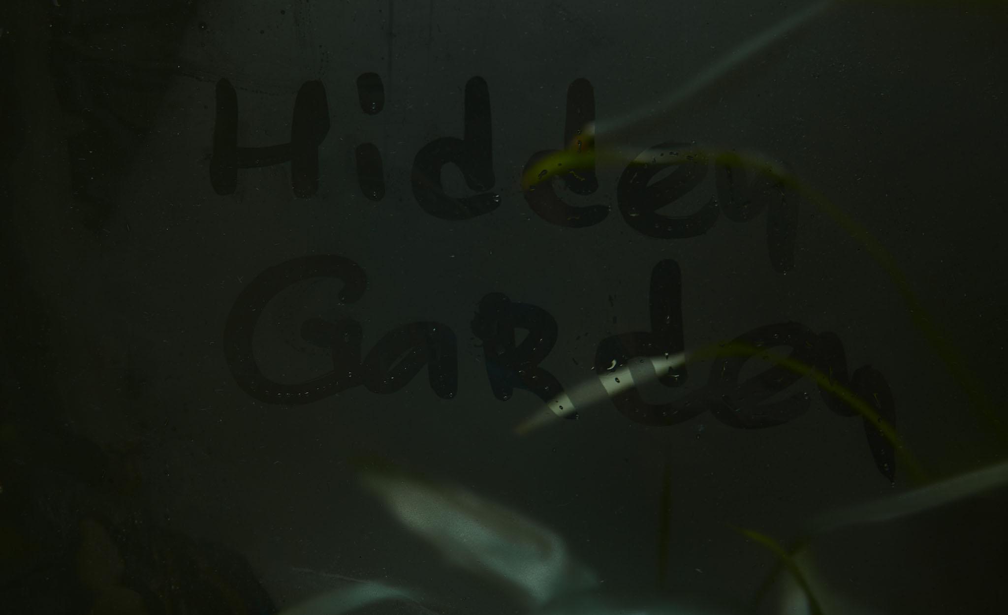 000_hidden_garden_evgeniy_sorbo.jpg