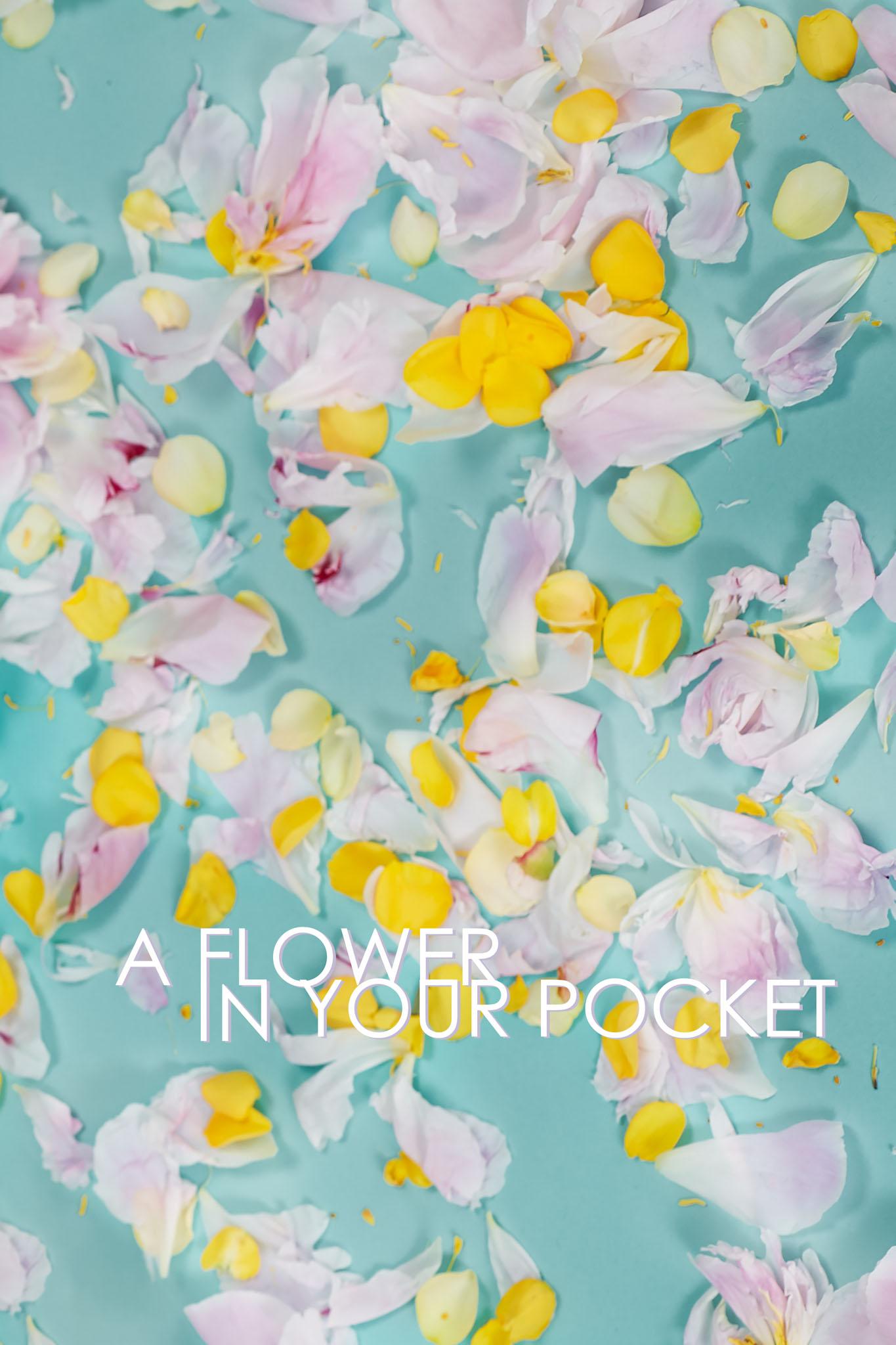 001_a_flower_in_your_pocket_evgeniy_sorbo.jpg