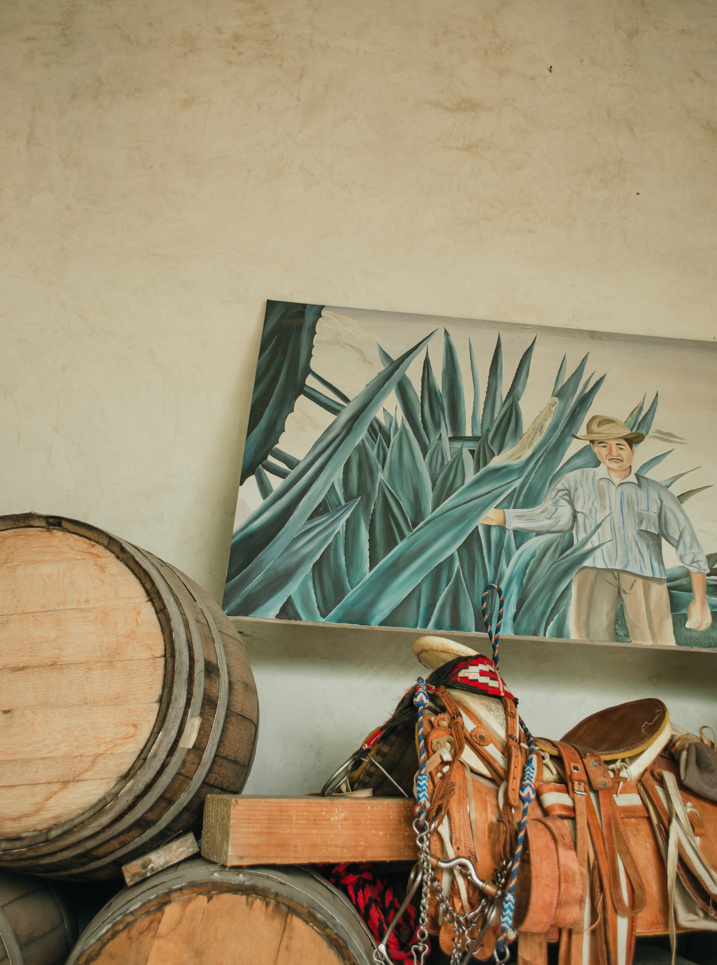 scenes from one of the beautiful mezcal distilleries we visited
